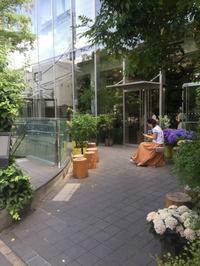 ニコライバーグマンのカフェ - ♪くらしを楽しむ♪ freshmintカフェ  ☆インテリア茶箱 フレンチデコ 薬膳料理☆