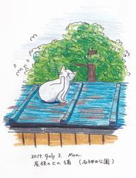 屋根の上の猫 - 一天一画   Yuki Goto