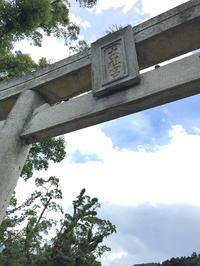 太祖宮の楠(糟屋郡篠栗町) - 今日は何処まで