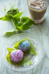 紫陽花 ♪ - Lovely Photo