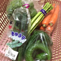 菜摘と前撮り - arare-day's 3rd
