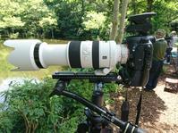 カワセミ仕様の改修・・・ - ぶらりカメラウォッチ・・
