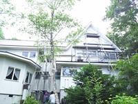 外壁塗装工事 始まりました - 浅間高原・北軽井沢 ペンション・ローエングリンの高原日記