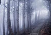 フォトショップによる霧の表現の画像処理 - スポック艦長のPhoto Diary