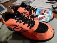 薪割り対策・・安全靴を買いました。 - あいやばばライフ