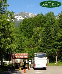ミッション! 新しいバス停を制覇せよ!! - 乗鞍高原カフェ&バー スプリングバンクの日記②