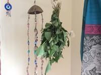 6月の宿題 「どくだみ化粧水とどくだみ茶」 - Hawaiian LomiLomi サロン  華(レフア)邸