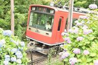 箱根登山鉄道 - 想い出