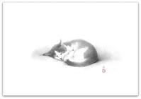 『 Gallerytanasita 17』開設84 - 『Gallery tanasita 1735』croquis・drawing・dessin・ sketch