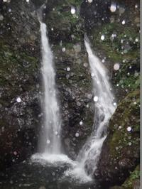 【比良/白滝谷】暑苦しい梅雨時は頼れる助っ人と沢遊び - つれづれ山日記 biwaco mt.memory
