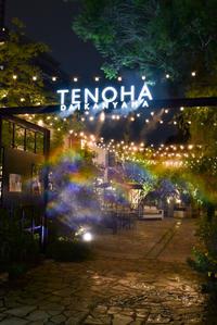 【サントリーグルメガイド公式】代官山「TENOHA&STYLE RESTAURANT」毎日使えるお洒落イタリアン - IkukoDays
