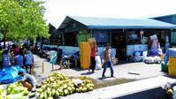 ココナッツウォーターで水分補給 - モルディブ現地情報発信ブログ 手軽に気軽に賢く旅するローカル島旅!