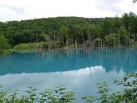 青い池。 - 気まぐれ日記