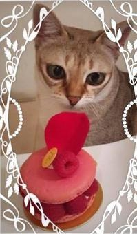 お誕生日❣️ - 八巻多鶴子が贈る 華麗なるジュエリー・デイズ