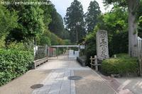 2017年7月三室戸寺、黄檗山万福寺、平等院 - ハープの徒然草