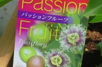 passion!♪ - 長女Yのつれづれ記
