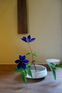 素敵な平鉢にテッセン - g's style day by day ー京都嵐山から、季節を楽しむ日々をお届けしますー