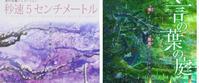 童貞感 - owls  column