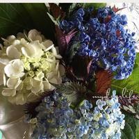 名残りの紫陽花 - 花伝からのメッセージ           http://www.kaden-symphony.com
