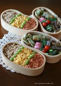 3色そぼろ丼と天ぷらセット ✿ カジキのお刺身といろいろ(๑¯﹃¯๑)♪ - **  mana's Kitchen **