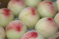 桃の季節です - パン・お菓子教室 「こ む ぎ」