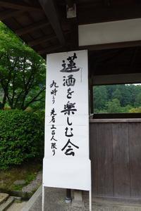 三室戸寺・蓮酒を楽しむ会 - (新)トラちゃん&ちー・明日葉 観察日記