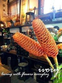 『 ゴールデン シャンプー 』 -  Flower and cafe 花空間 ivory (アイボリー)