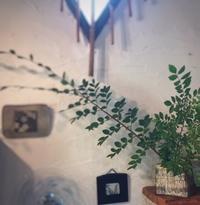 小川洋子さんの三島手花器。 - 陶千房ノート