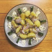 ポテトフラワーサラダ - 料理嫌いエビトムのあまりにシンプルな生活