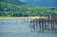 シューパロ湖 - Photo Of 北海道大陸
