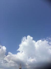 夏の空とパワーチャージ - ルーシュの花仕事