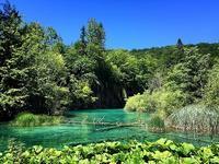 世界の絶景:プリトヴィッチェ湖群国立公園① - うつわ愛好家 ふみの のブログ