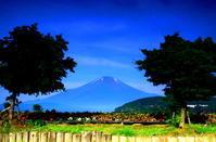 29年7月の富士(11)花壇と富士 - 富士への散歩道 ~撮影記~