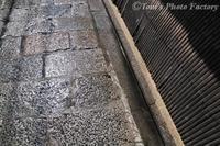 京を歩く~洛中「京の舞華」先斗町の舞妓さん - Tomの一人旅~気のむくまま、足のむくまま~