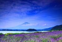 29年7月の富士(12)ラベンダーと富士 - 富士への散歩道 ~撮影記~