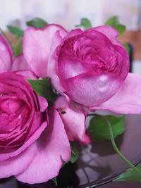 お花とスイーツで思わず笑顔♡ - Cozyで楽しい暮らしに憧れて♪