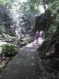 涼を求めて・・・赤目四十八滝 - タワラジェンヌな毎日
