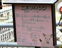 2017年7月浜松市動物園その7ゾウのトレーニング - ハープの徒然草