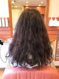 細毛は大切扱わないと、えらい目に合います♪ - 君津市 南子安の美容室  La Face   ✯   ラフェイス のブログ
