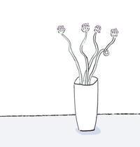 丹頂アリウム - イラストレーション ノート
