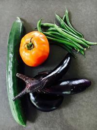 野菜の収穫始まる - MotoのNY料理教室ライフ