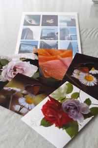 写真教室も・・・ -  ✿ Life ✿ 365日 私の毎日 ✿