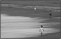 Beach - コバチャンのBLOG