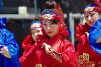 2017舞龍祭その15(わん!WAN) - ヒロパンの天空ウォーカー