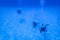 外洋へ 遠征ツアー 奄美大島ダイビング - 奄美大島 ダイビングライフ    ☆アクアダイブコホロ☆
