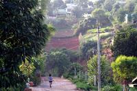 写真撮影ツアー、今度はシャン州へ6 - Myanmar Eye