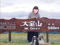 2017.7 伊豆高原旅行♪大室山② - さくらひめほっこり日和
