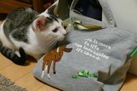 暑中お見舞い申し上げます♪ - オール電化生活!カノンとキアと猫ちゃんと愉快な仲間