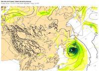 台風5号、8月7日(月)、神戸直撃 !! - 沖縄の風