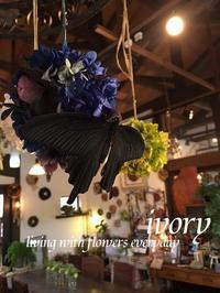 突撃訪問〜♬ -  Flower and cafe 花空間 ivory (アイボリー)
